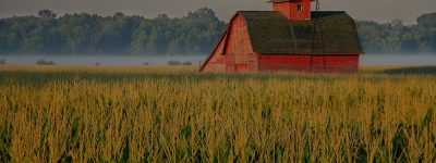farm and crop insurance in Lima STATE | Ley Insurance Agency